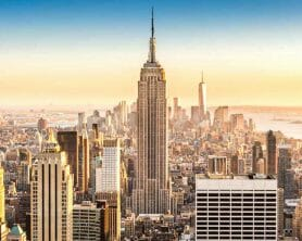 Summer Internship in New York
