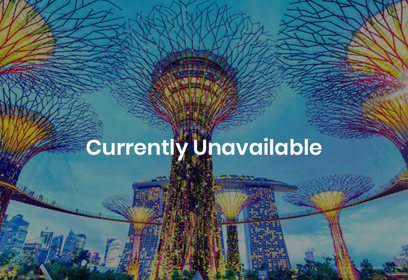 Summer Internship in Singapore